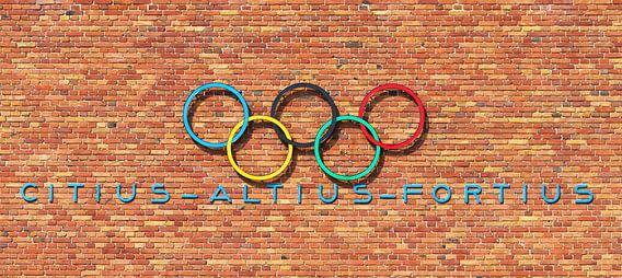 Olympische muur van Dennis van de Water