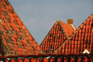 Puntdak/rooftop van Harrie Muis