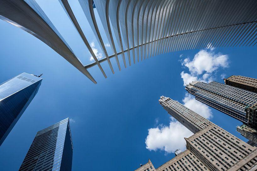 Lower Manhattan van Eddy Westdijk