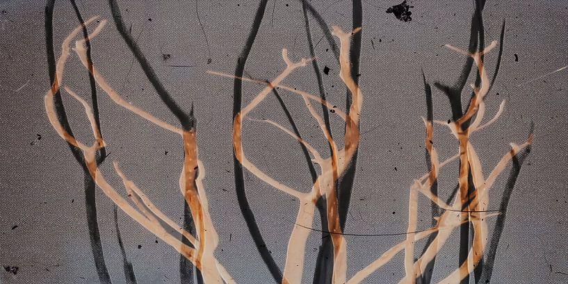 Die Blätter sind gefallen von Christine Nöhmeier