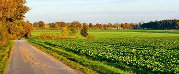 Autumnal Panorama van Gisela Scheffbuch