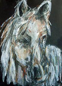Wit bruin paard.