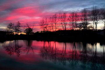Roze avondlucht II van Corinne Welp