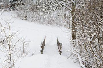 Sneeuw( snowlandscape) van Diana Edwards