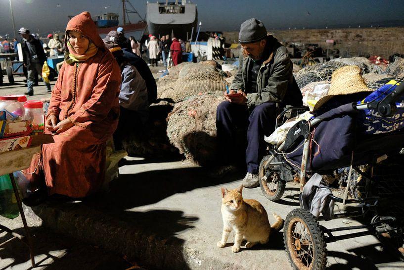 Kat op de vismarkt in Essaouira, Marokko van Ingrid Meuleman