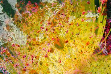 Joie florale von Martine Affre Eisenlohr