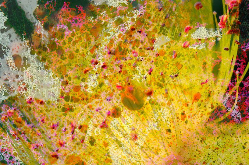 Joie florale van Martine Affre Eisenlohr