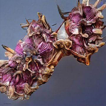 Alien Flowers 2 van Rein Bijlsma