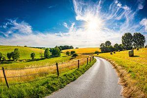 Summer Landscape van