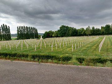Begraafplaats  Metz Frankrijk van Wilbert Van Veldhuizen