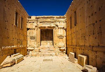 Palmyra van René Holtslag