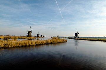 Kinderdijk, Nederland van Samantha Giannattasio