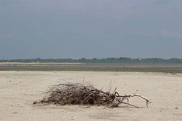 Uitzicht strand van Priscilla Bakker