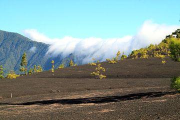National Park Caldera de Taburiente in La Palma van