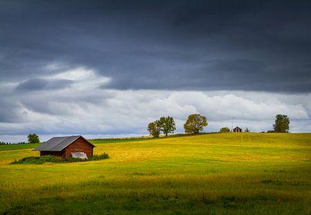 Herfst in Zweden von Hamperium Photography