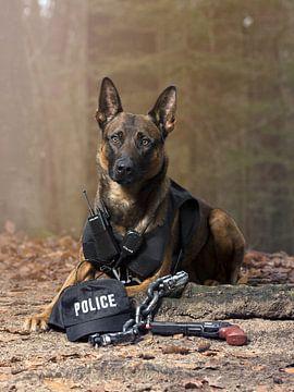 Politiehond van Dominique van Ojik