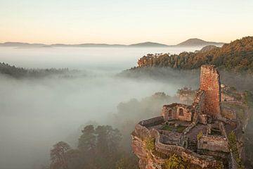 Altdahn-kasteel in het ochtendmistwoud van de Pfälzer Wald in de Morgenmist van Jiri Viehmann