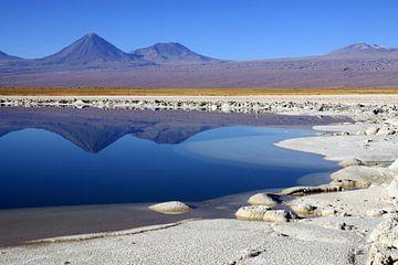 Cejar lagune van