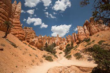 Bryce canyon Utah van Fabio Holkema