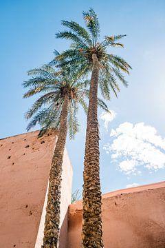 Zwei Palmen in Marrakech von Evelien Oerlemans