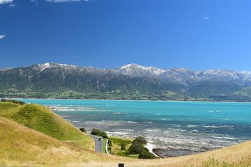 Autorit Kaikoura Nieuw-Zeeland von Bianca Bianca