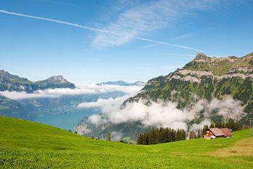 Schweizer Landschaft am Vierwaldstättersee von Ivonne Wierink