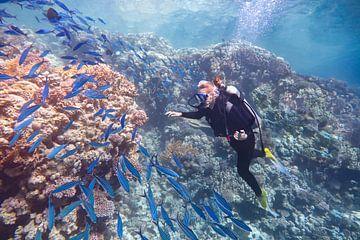 Jonge Nederlandse vrouw duikt in zee bij koraalrif en school blauwe vissen van Ben Schonewille