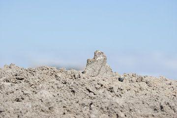 Gewoon een berg van Lynlabiephotography
