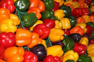 Paprika's in alle kleuren van Anna van Leeuwen
