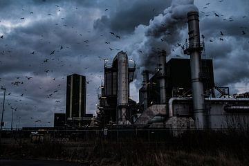 Fabriek in de Botlek von MICHEL WETTSTEIN