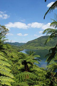 Blue Lake, ein See in der Nähe von Rotorua von Jeroen van Deel