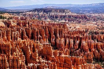 Bryce Canyon van