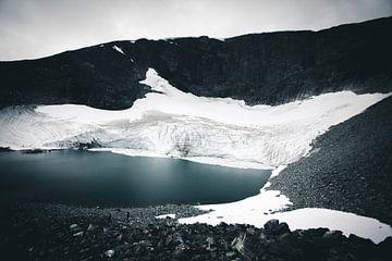Norwegian Gletsjer van Jip van Bodegom