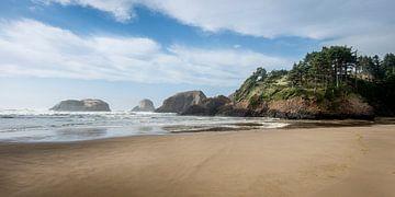 Rocky Coast of Oregon (US) von Rob IJsselstein