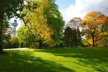 Herfst in Het Park bij de Euromast in Rotterdam van Michel van Kooten