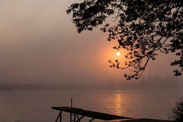 Lever de soleil avec du brouillard sur les mailles