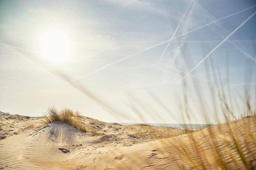 Dunes van Casper De Graaf