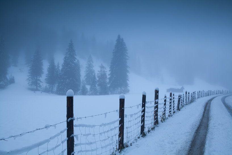 Winter trip van Olha Rohulya
