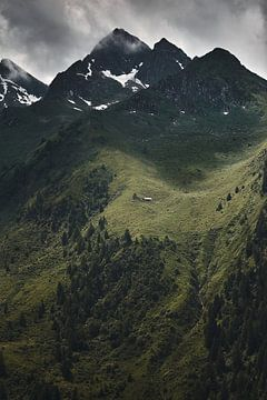 Alpenansicht 2 von Bart Rondeel