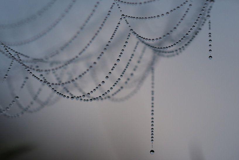 Hangende parelketting von Astrid Brouwers