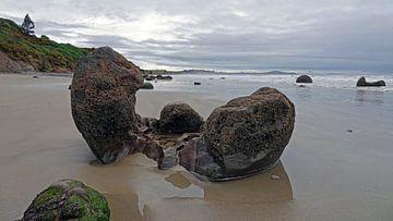 Moeraki Boulders am strand in Neuseeland von Aagje de Jong