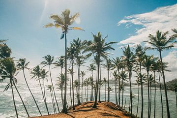 Coconut Tree Hill in Mirissa, Sri Lanka, Zuid Azie van Art Shop West