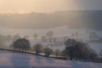 Winterlandschap met sneeuw: Limburgse heuvels en bossen van The Book of Wandering