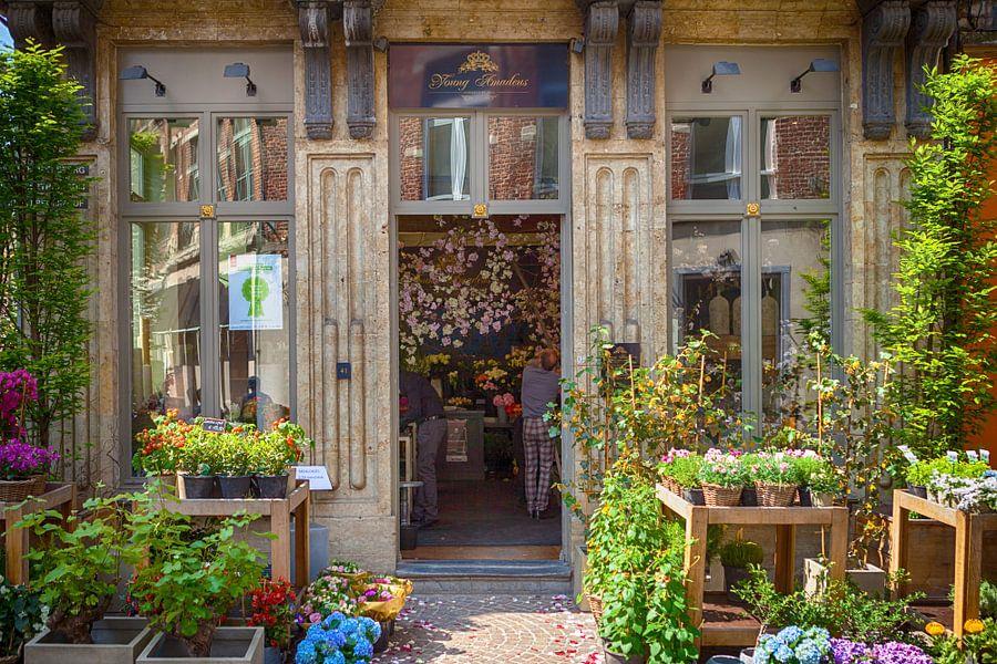 Bloemenwinkel in leuven van joran maaswinkel op canvas for Interieur leuven