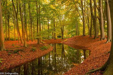 Herbst 2020 von RHHobbyfotograaf