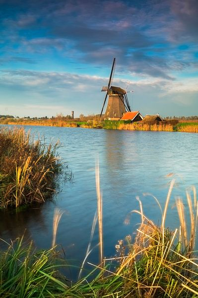 Hollands van Jan Koppelaar
