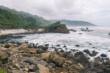 Strand langs de westkust van Nieuw-Zeeland van Linda Schouw