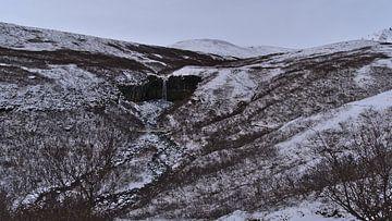 Skaftafell in de winter van Timon Schneider