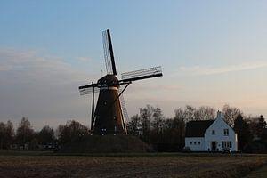 Molen De Roosdonck, Nuenen van