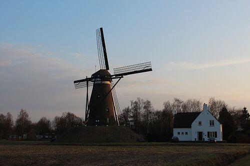 Molen De Roosdonck, Nuenen